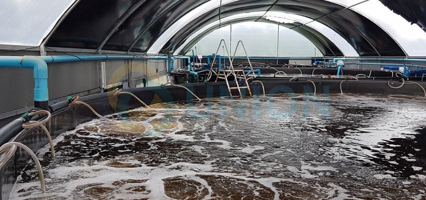 Hướng dẫn chọn máy thổi khí phù hợp cho sục khí xử lý nước thải