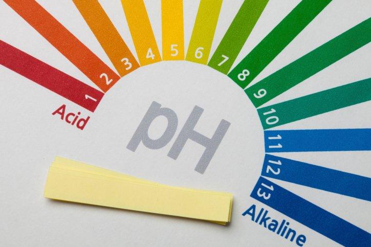 Kiểm tra độ pH trong nước hồ cá